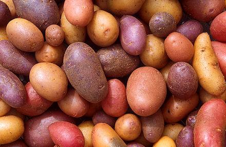 440px-patates