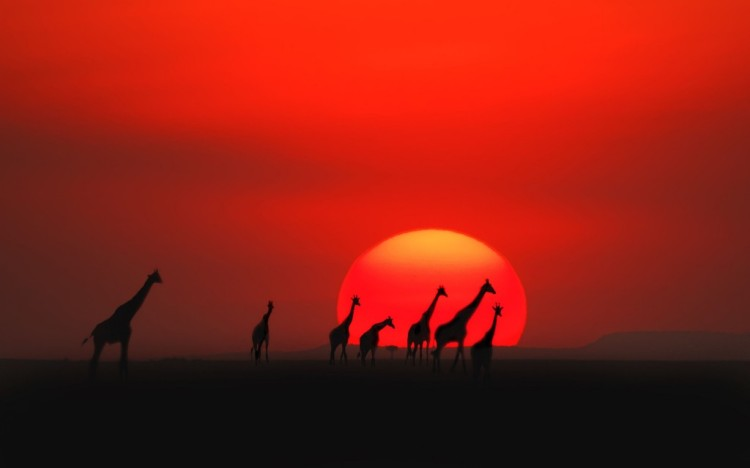 kenya-sunset-1024x640